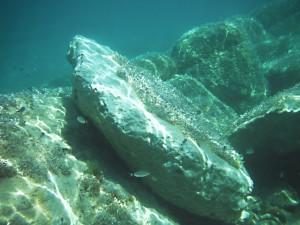 pod mořem